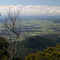 Murwillumbah from Mt Warning Wollumbin track