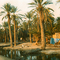 1989 - Palm trees in oasis near Misratah