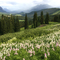 Crested Butte Wilderness