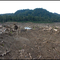Oil palm plantation land clearing in Talasea